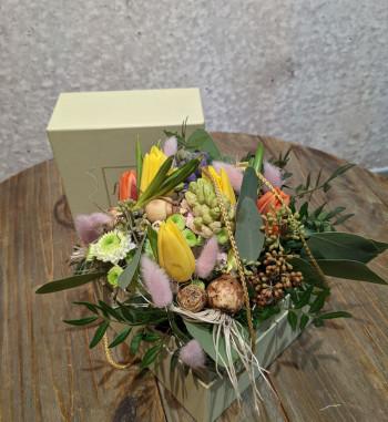 Flowerbox Frühling